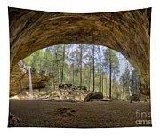 Ash Cave Waterfall Tapestry