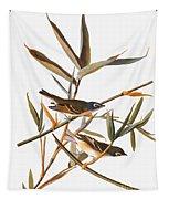 Audubon: Vireo Tapestry