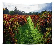 Autumn Vineyard In The Morning  Tapestry