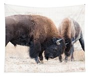 Battle Of The Bison In Rut Tapestry