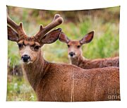 Beautiful Mule Deer Herd Tapestry