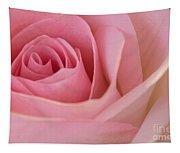Beautiful Pink Rose Closeup Tapestry