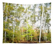 Birch Forest Tapestry