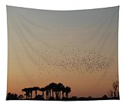 Birds In The Sun Tapestry