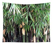 Black Bamboo Tapestry