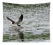 Black Skimmer Fishing Tapestry