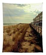 Boardwalk In Winter Tapestry