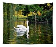 Boston Public Garden Swan Green Reflection Tapestry