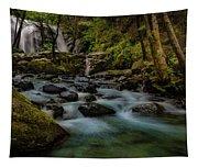 Brandy Creek Falls Tapestry