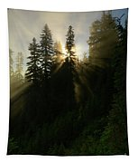 Breaking Dawn Tapestry