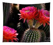 Sonoran Spring Tapestry