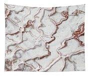 Calcium Deposits From Thermal Springs, Pamukkale - Turkey  Tapestry