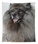 Canine Beauty Tapestry