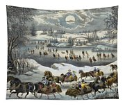 Central Park In Winter Tapestry