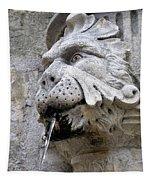 Closeup Of A Public Fountain In Dubrovnik Croatia Tapestry