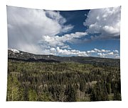 Colorado Beauty Tapestry