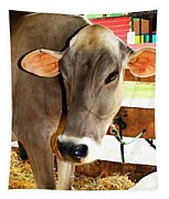 Cow 2 Tapestry