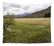 Cullin View Tapestry