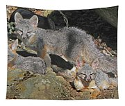 D-a0072 Fox Family On Our Mountain Tapestry
