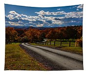 Dirt Road Through Vermont Fall Foliage Tapestry