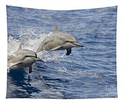 Dolphins Leaping Tapestry