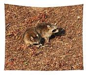 Green Heron Babies Tapestry
