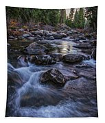 Down River Tapestry