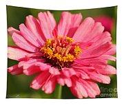 Fuchsia Pink Zinnia From The Whirlygig Mix Tapestry