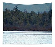 Geese On Labrador Pond Tapestry