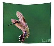 Grace Of A Hummingbird Tapestry