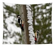 Great Spotted Woodpeckers Tapestry