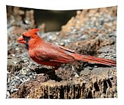 Hungry Cardinal Tapestry