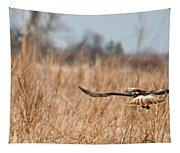 Hawk Soaring Over Field Tapestry