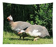 Helmeted Guineafowl Tapestry