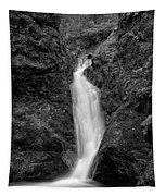 Indian Well Flows Bw Tapestry