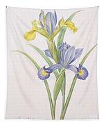 Iris Xiphium Tapestry