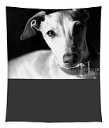 Italian Greyhound Portrait In Black And White Tapestry