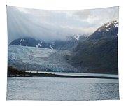 John Hopkins Glacier Tapestry