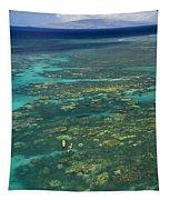 Kayaking Through Beautiful Coral Tapestry
