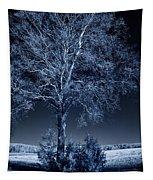 Koivu Tapestry