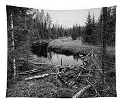 Liesijoki.  Seitseminen National Park Tapestry