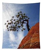 Lone Bonsai Tree In Zion Tapestry