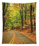 Lost In Pennsylvania - Paint Tapestry