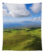 Maui Aerial Tapestry