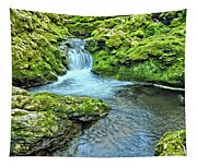 Mossy Moine Falls Tapestry