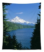 Mt. Hood National Forest Tapestry