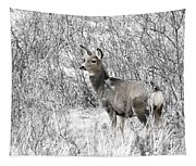 Mule Deer In Winter In The Pike National Forest Tapestry