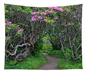 Nature's Tunnel Tapestry