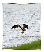 Osprey Fishing In The Afternoon Tapestry