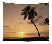 Palm At Sunset Tapestry